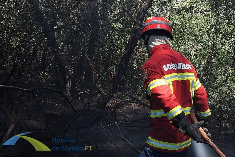 Incêndio em habitação precária em Samora Correia deixa duas pessoas desalojadas