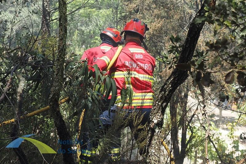 Incêndio em Mora combatido por 30 bombeiros e 1 meio aéreo