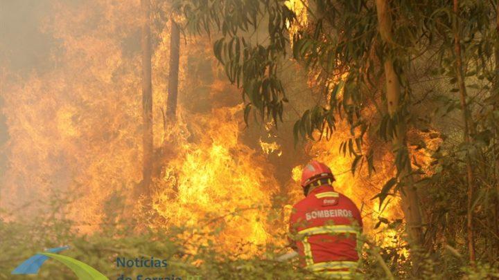 Aumento da temperatura mantém Portugal em alerta de risco de incêndio