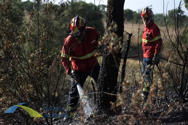 Protecção Civil aprova novo Plano Municipal de Emergência de Benavente