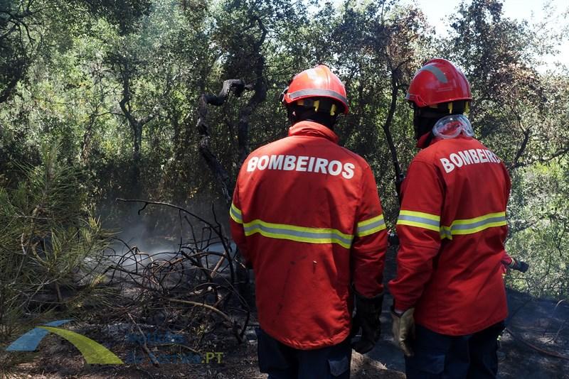 Incêndio em Santo Estêvão mobiliza helicóptero e auto-tanque despista-se no socorro provocando um ferido