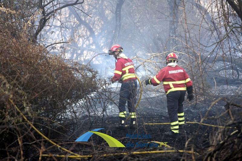 Incêndio em Santo Estevão combatido por uma centena de operacionais e 4 meios aéreos (Com Fotos)