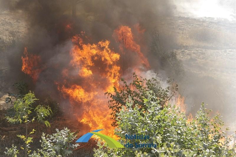 Governo prolonga período crítico de incêndios até dia 10 de Outubro