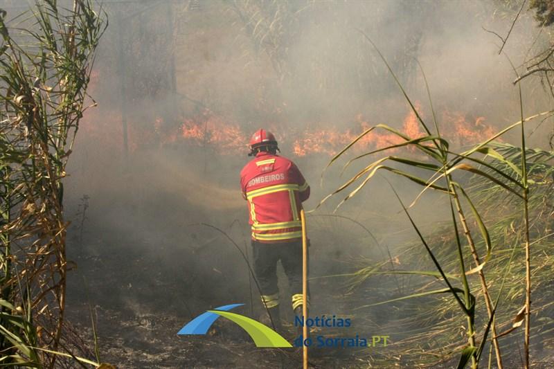 Dispositivo de combate a incêndios conta cerca de 12 mil operacionais e 60 meios aéreos