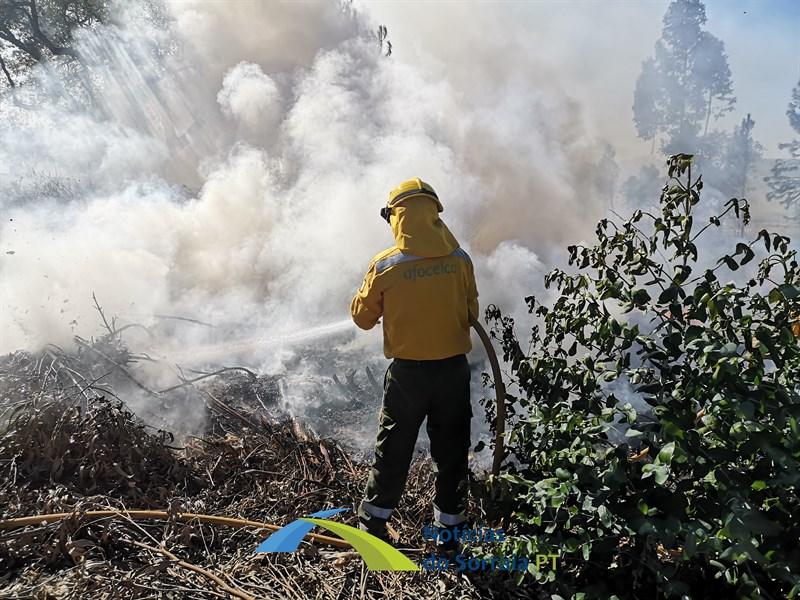 Máquina agrícola provoca incêndio em Coruche. Mais de 120 operacionais e 3 meios aéreos combateram fogo (Com Fotos e Vídeos)