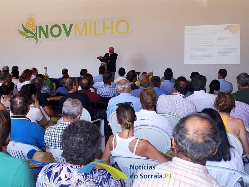 Dia de campo InovMilho mostrou ao Ministro da Agricultura a inovação na cultura do milho e do sorgo em Coruche (Com Fotos)