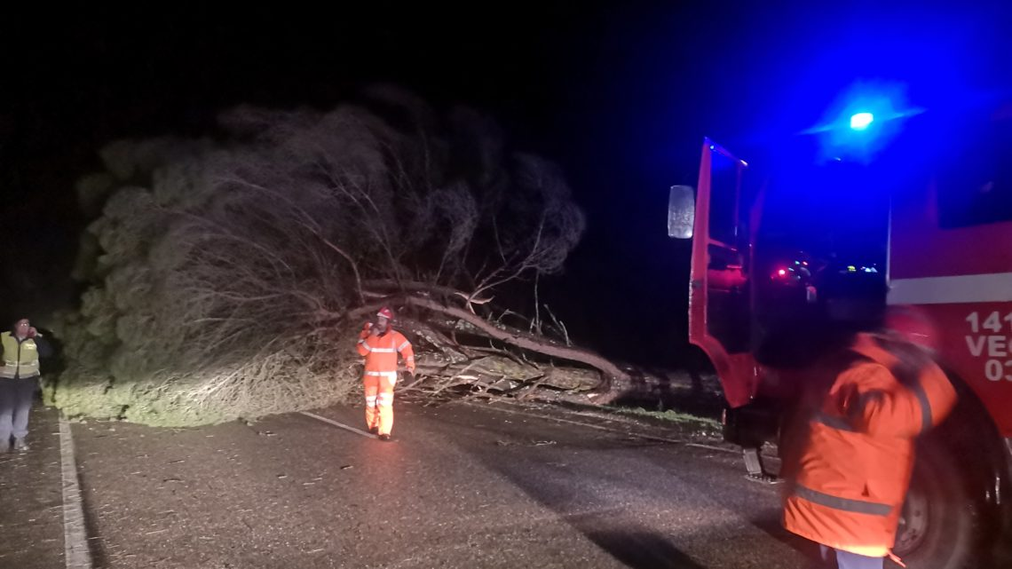 Última Hora – Estrada Nacional 114 entre Coruche e Santana do Mato cortada – ligação de Coruche ao Alentejo cortada