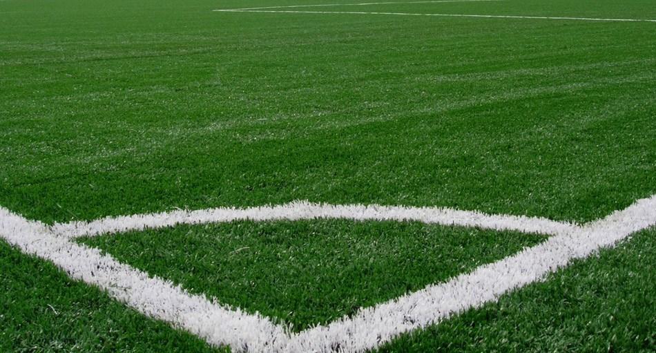 Arrelvamento do campo de futebol dos Montinhos aguarda legalização de terreno