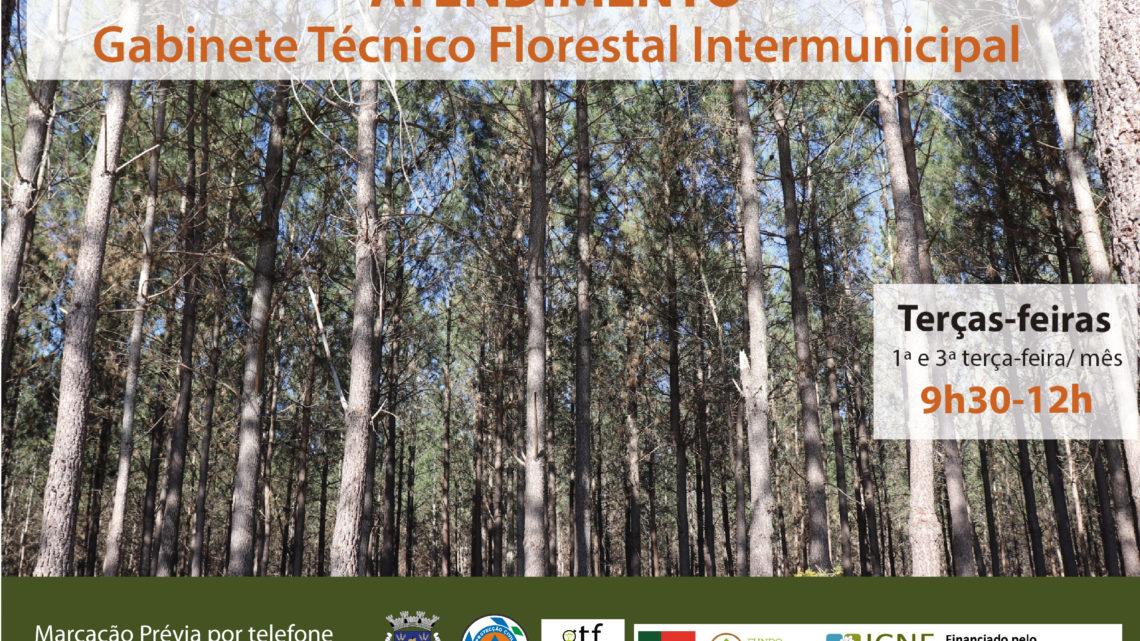 Gabinete Técnico Florestal Intermunicipal com posto de atendimento em Salvaterra de Magos