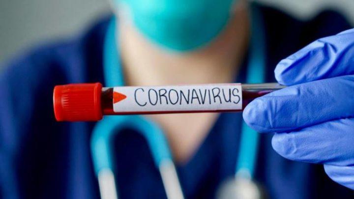 Portugal com mais 41 mortes e 979 novos casos de Covid-19