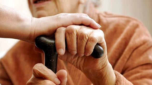 Câmara de Mora auxilia mais de 100 idosos