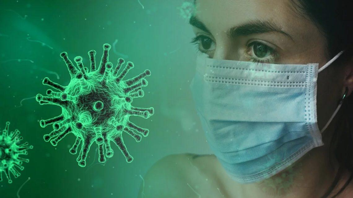 Portugal regista mais 260 óbitos e 5.540 novos casos. Número de doentes recuperados dá alento às equipas médicas