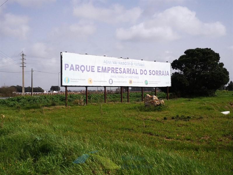 Parque Empresarial do Sorraia com infraestruturas de topo para receber empresas (Com Fotos)